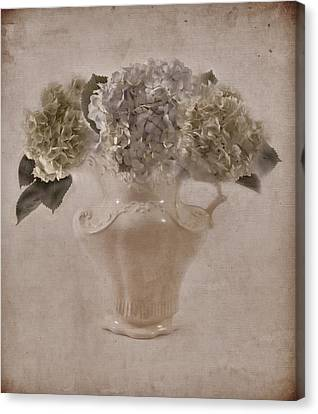 Canvas Print featuring the photograph Hydrangeas In Cream Pitcher by Sandra Foster