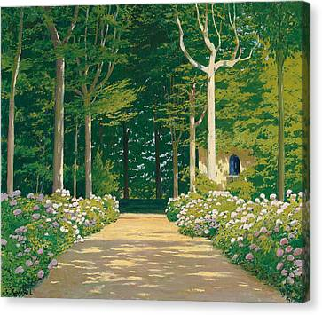 Hydrangeas On A Garden Path Canvas Print