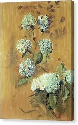 Hydrangeas Canvas Print by Paul Cesar Helleu