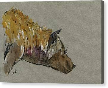 Hyena Head Canvas Print