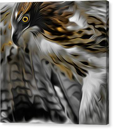 I Am Redtail Square Canvas Print by Bill Wakeley