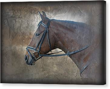 I Dreamt Of Thee Canvas Print by Renee Forth-Fukumoto