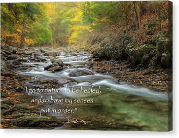 I Go To Nature Canvas Print