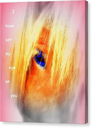 I Have Set My Eye On You, But I Have To Let You Go  Canvas Print by Hilde Widerberg