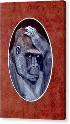 Gorilla Canvas Print - I Knew That by Catherine Swerediuk