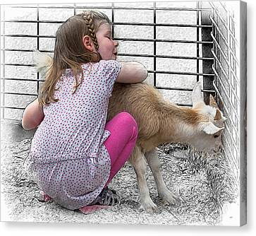 I Love A Baby Goat Canvas Print by John Haldane