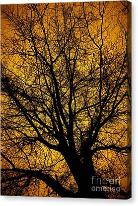 I Love Bare Trees Canvas Print