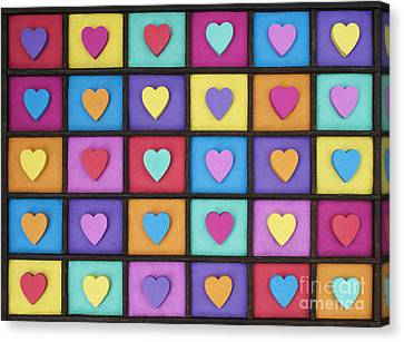 I Love Colour Canvas Print by Tim Gainey