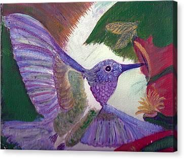 I Love Hummingbirds  Canvas Print by Anne-Elizabeth Whiteway