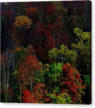 Canvas Print featuring the photograph I Love October by Eric Switzer