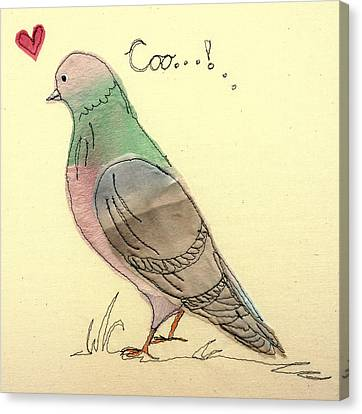 Pigeon Fancier Canvas Print by Hazel Millington