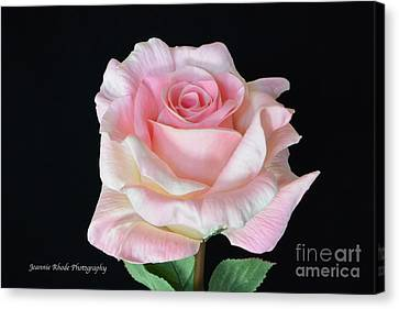 Canvas Print featuring the photograph I Love Us by Jeannie Rhode
