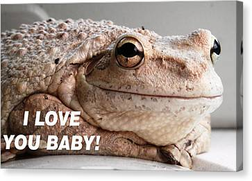 Frog Declaration Of Love Canvas Print