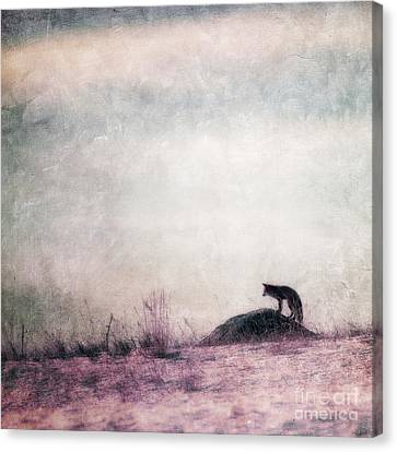 I Only Hear Silence Canvas Print by Priska Wettstein