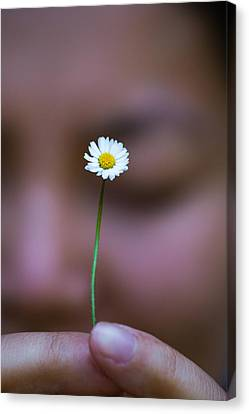 I Praise Thee Daisy Canvas Print by Mike Lee