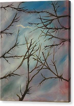 I Saw A White Bird Canvas Print
