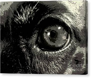 I See She Canvas Print by Isabelle Holt