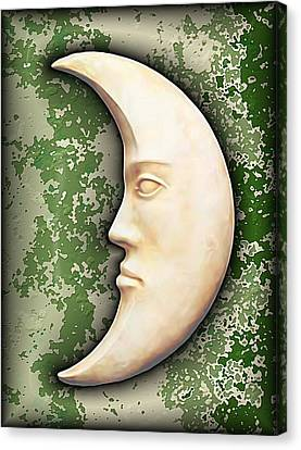I See The Moon 3 Canvas Print by Wendy J St Christopher