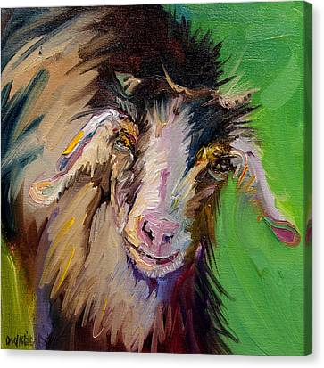 I See You Goat Canvas Print