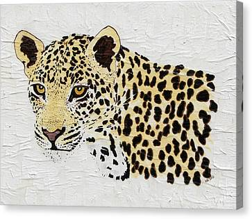 Canvas Print featuring the painting I See You by Stephanie Grant