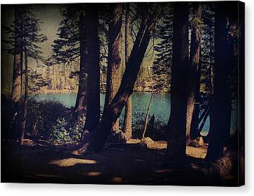 Dappled Light Canvas Print - I Sit In The Shadows by Laurie Search