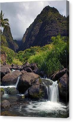 Iao  Storm Canvas Print by Mike  Dawson