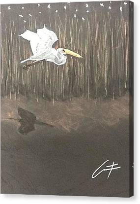 Ibis Over The Marsh Canvas Print