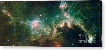 Ic 2177-seagull Nebula Canvas Print by Science Source