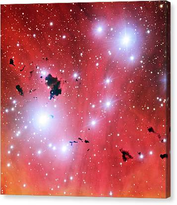 Ic 2944 Nebula Canvas Print by European Southern Observatory