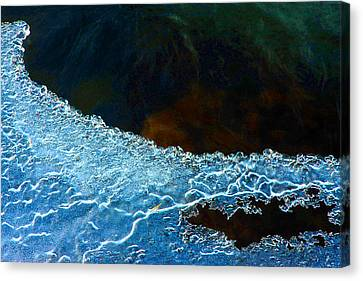 Frailty Canvas Print - Ice And Lace by Mike Flynn