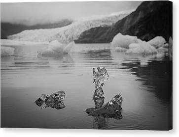 Ice Angel Canvas Print by Roger Clifford