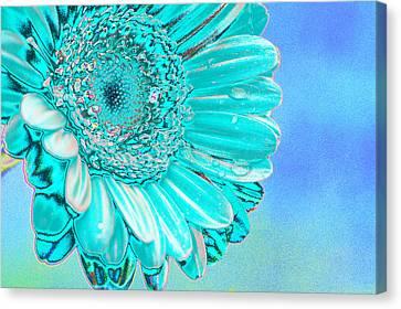 Blue Flowers Canvas Print - Ice Blue by Carol Lynch