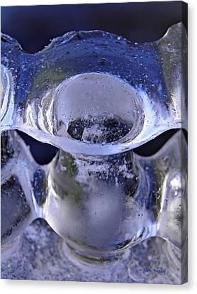 Ice Bowls Canvas Print