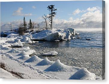 Canvas Print featuring the photograph Ice Cold by Sandra Updyke