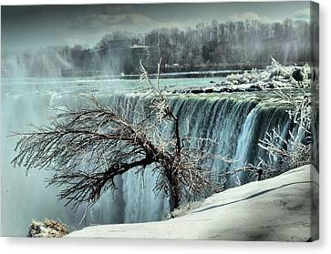 Ice Covered Tree Canvas Print by Douglas Pike