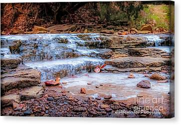 Ice Creek Canvas Print