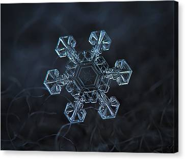 Snowflake Photo - Ice Crown Canvas Print by Alexey Kljatov
