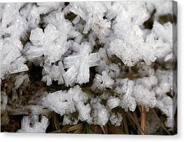 Ice Crystals Canvas Print by Martin Rietze