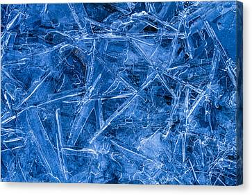 Ice Crystals Canvas Print by Teri Virbickis