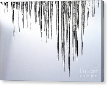 Ice Cycles Canvas Print by Paul W Faust -  Impressions of Light