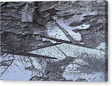 Ice Design Canvas Print by Carolyn Reinhart
