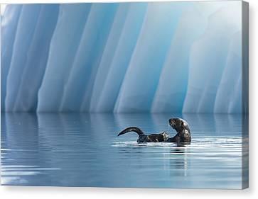 Otter Pop Canvas Print