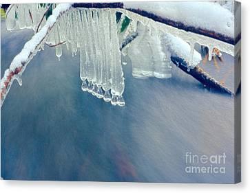 Ice Drops Over Stream Canvas Print by Dan Friend