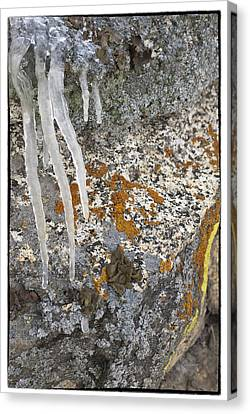 Ice Fall Canvas Print