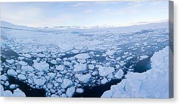 Ice Floating In Fjord, Tiniteqilaaq Canvas Print by Panoramic Images