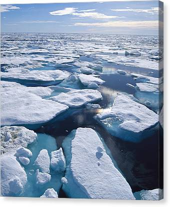 Ice Floes In Arctic Northwest Territories Canvas Print by Konrad Wothe