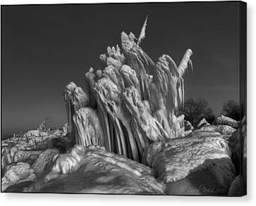 Ice Formation Black And White Canvas Print by Daniel Behm