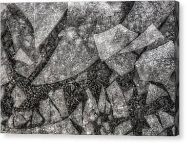 Ice Fractal Canvas Print by Jason Politte