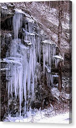 Ice I Canvas Print