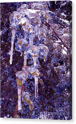 Ice In Purple Canvas Print by R McLellan